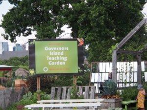 ガバナーズ島の野菜栽培