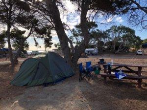 カンガルー島キャンプ
