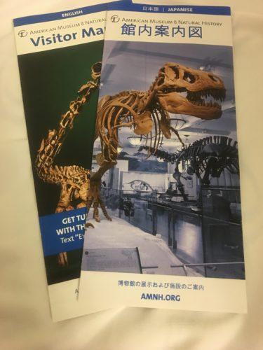 【お得情報】アメリカ自然史博物館の入場料【1ドルで入場する裏技も紹介】